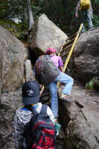 岩を登ったり、ハシゴを登ったり