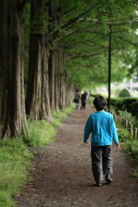 相模原公園の並木道