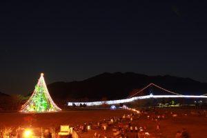 クリスマスツリーが点灯しました