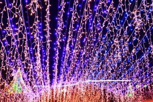 光のトンネルの青色LED部分