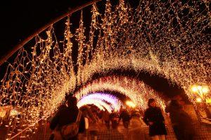 宮ヶ瀬の光のトンネル