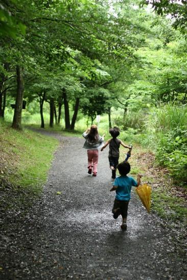雨の日の写真散歩 (11)