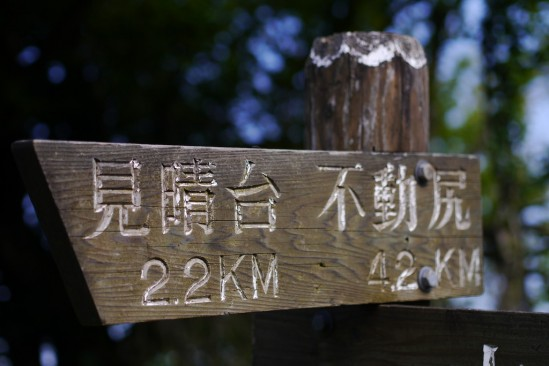 春の大山登山 (77)