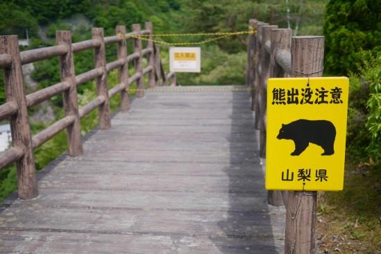 広瀬ダムの周囲の道は熊出没注意