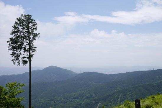 春の大山登山 (29)