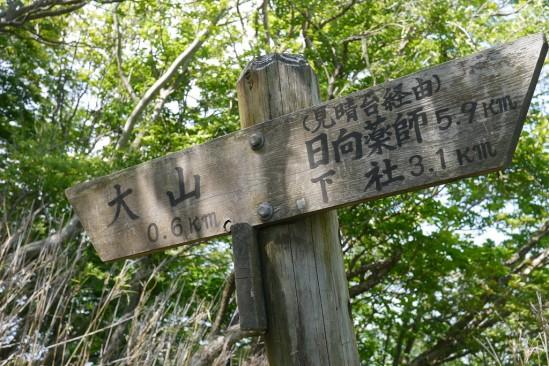 春の大山登山 (51)