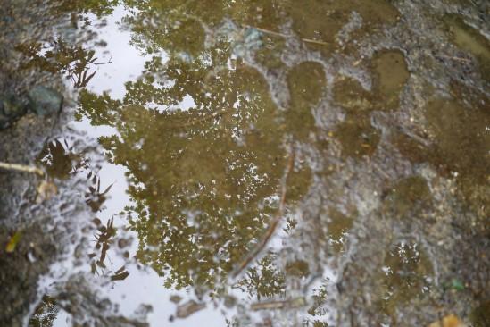 ぬかるんでいる尾瀬の登山道