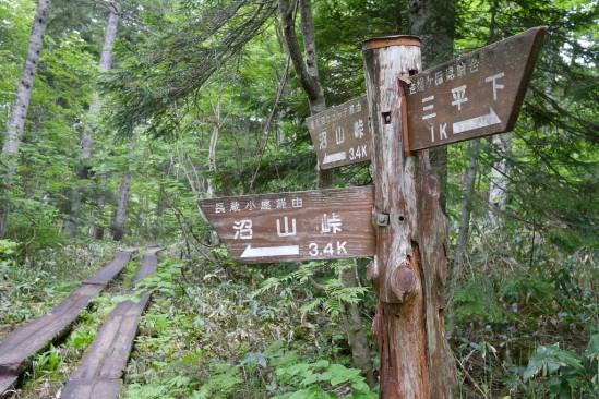 尾瀬沼ヒュッテでテント泊、燧ヶ岳登山 (32)