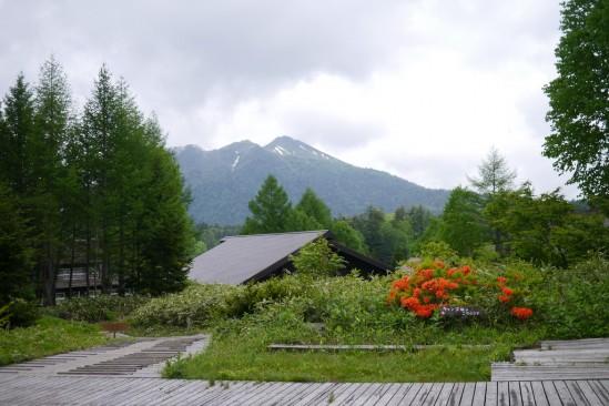 尾瀬沼ヒュッテから燧ヶ岳を望む