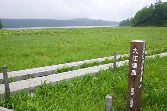 尾瀬沼ヒュッテでテント泊、燧ヶ岳登山 (92)