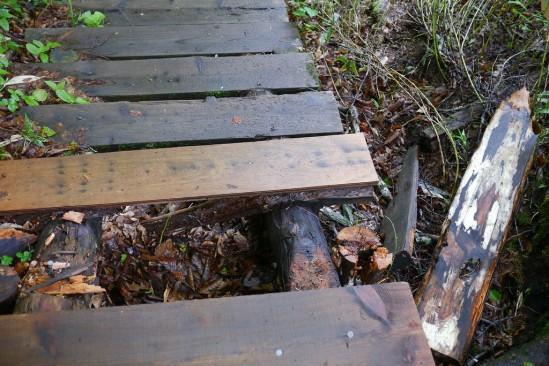 ところどころ壊れている尾瀬の木道