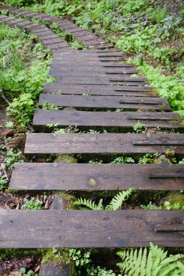 尾瀬のピアノのような木道階段