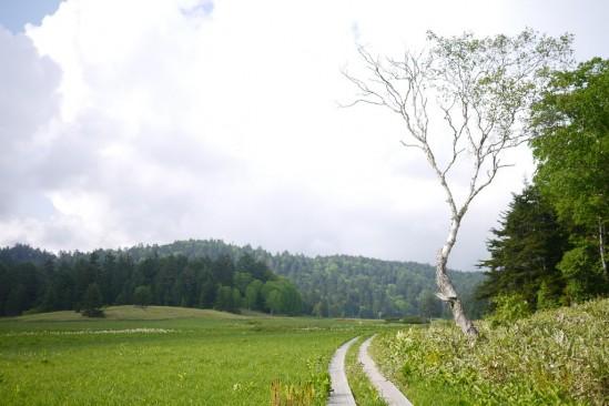 尾瀬沼ヒュッテでテント泊、燧ヶ岳登山 (87)
