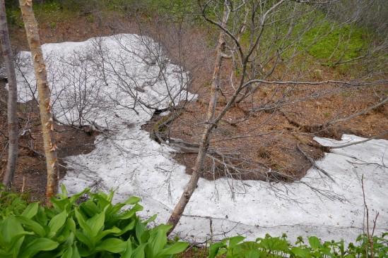 雪が残っていました