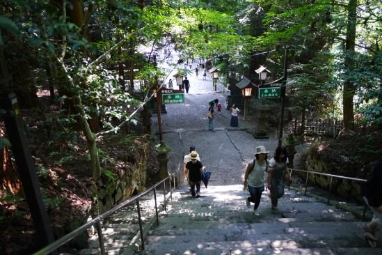 高千穂神社 (20)