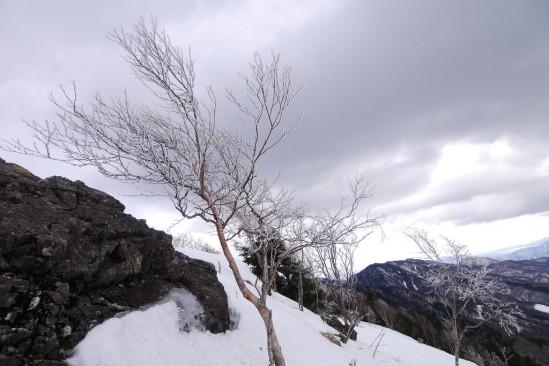 大菩薩嶺 雪山登山 (3)