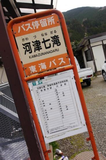 河津七滝・河津桜 (18)