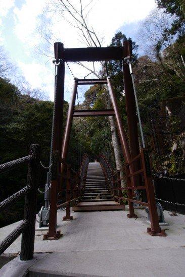 河津七滝・河津桜 (43)