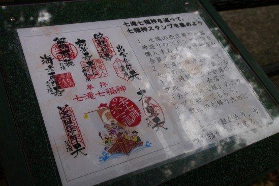 河津七滝・河津桜 (26)