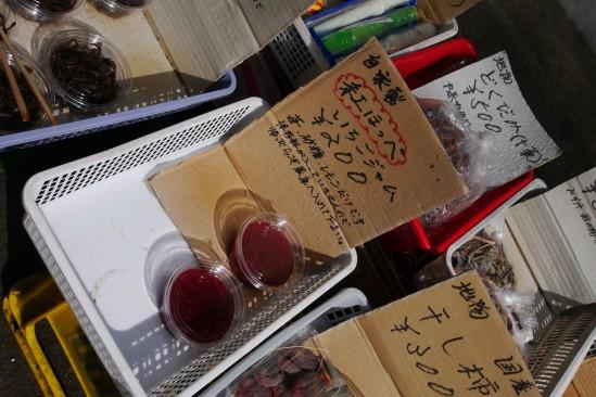 河津七滝・河津桜 (33)