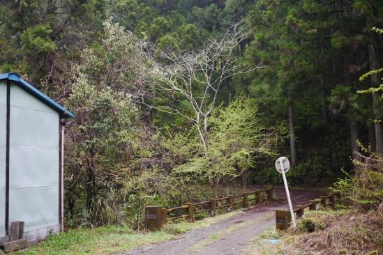 蛭ヶ岳 登山 (2)