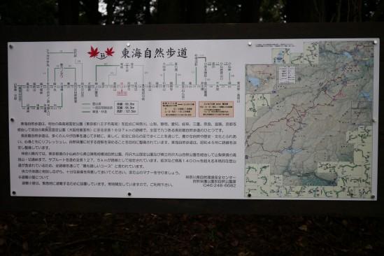 蛭ヶ岳 登山 (38)