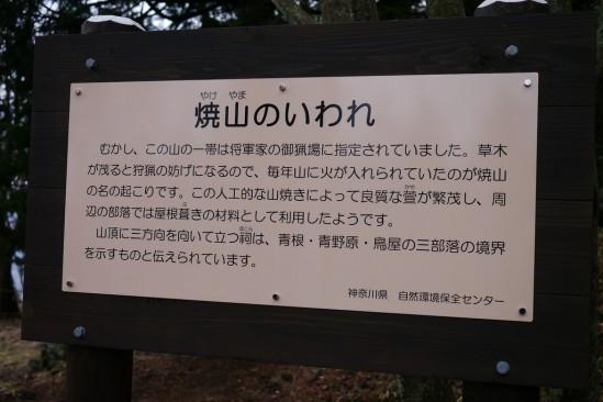 蛭ヶ岳 登山 (41)