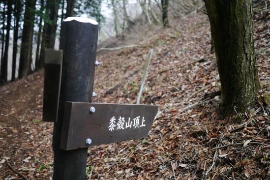 蛭ヶ岳 登山 (56)