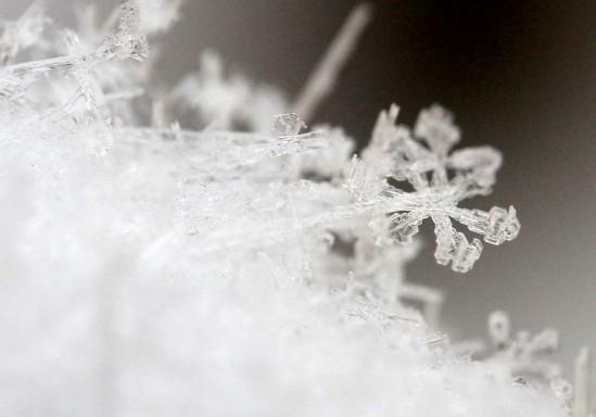 雪の結晶をマクロレンズで撮影