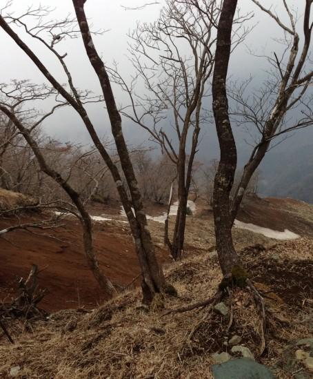 蛭ヶ岳 登山 (114)