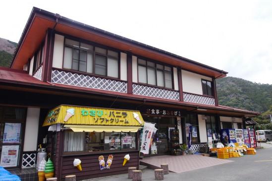 河津七滝・河津桜 (17)