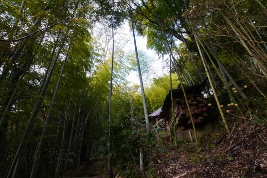 河津七滝の隠れ家レストラン ひぐらし