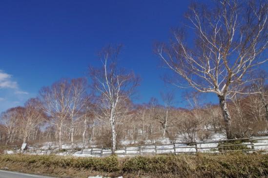 雪の残る赤城山 (11)