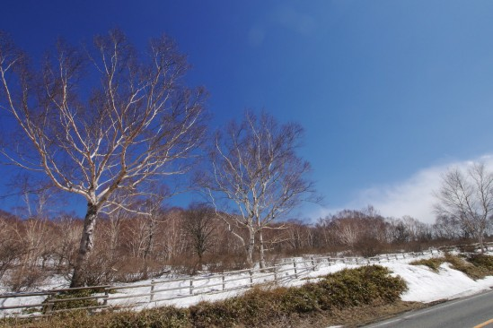 雪の残る赤城山 (13)