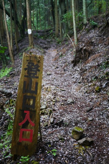 蛭ヶ岳 登山 (5)