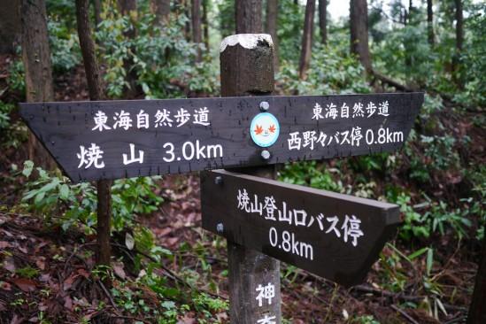 蛭ヶ岳 登山 (8)