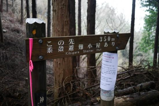 蛭ヶ岳 登山 (58)