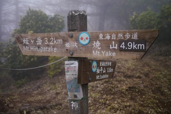 蛭ヶ岳 登山 (74)
