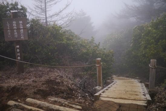 蛭ヶ岳 登山 (75)