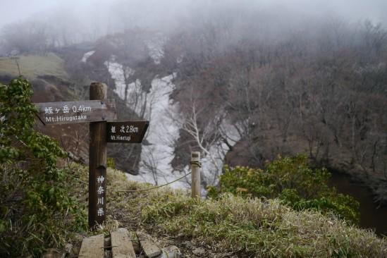 蛭ヶ岳 登山 (98)