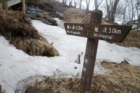 蛭ヶ岳 登山 (99)