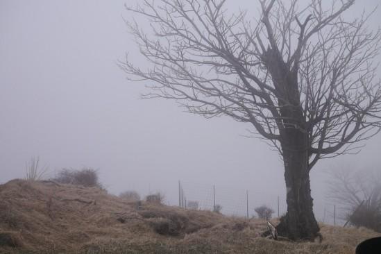 蛭ヶ岳 登山 (108)