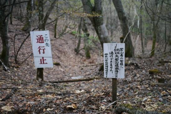蛭ヶ岳 登山 (120)